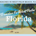 Best Beaches In West Palm Beach