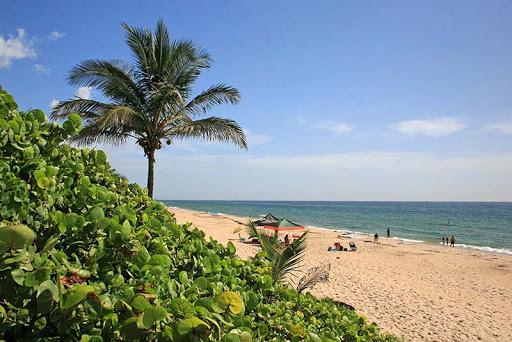 Gulfstream Park Beach
