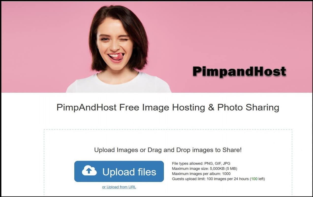 PimpAndHost (1)
