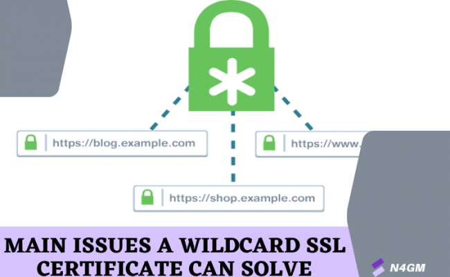 Main Issues a Wildcard SSL Certificate Can Solve (1)